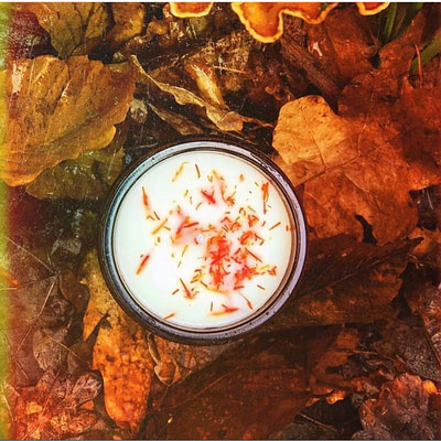 Buy Orange Embers candle from Run with Wolves from Kin & Co Abersoch